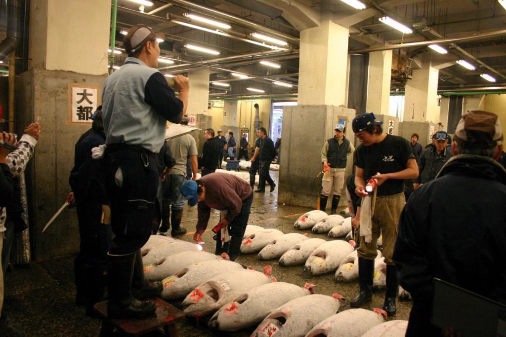 Оптовый рыбный рынок в Токио, Аукцион тунца, Япония 2008