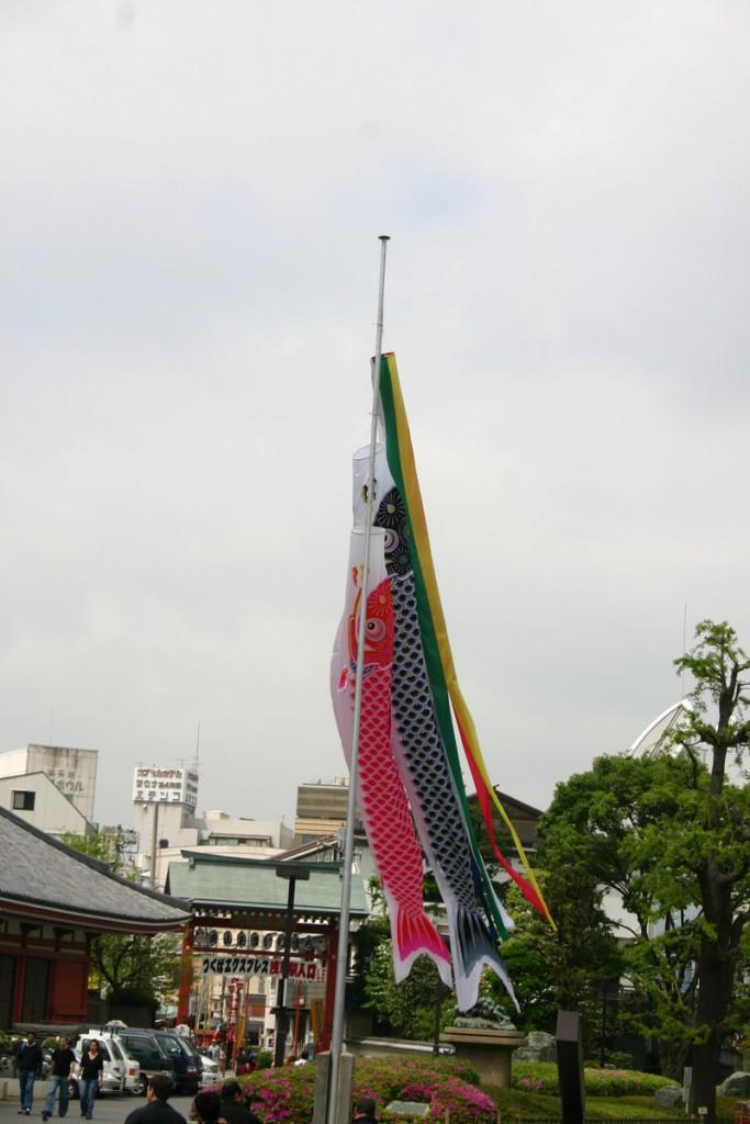Флаги-караси, Япония 2008