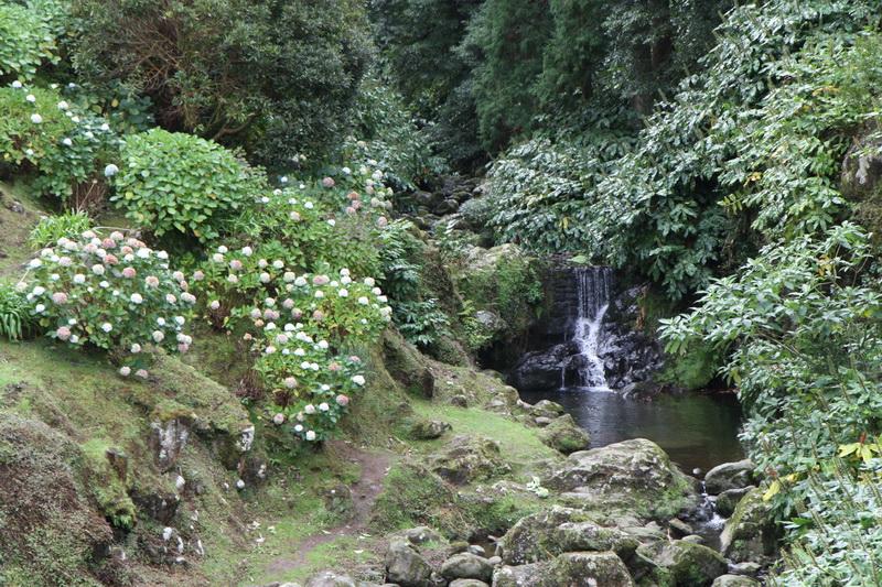 Водопадик в парке, Азорские острова, 2015
