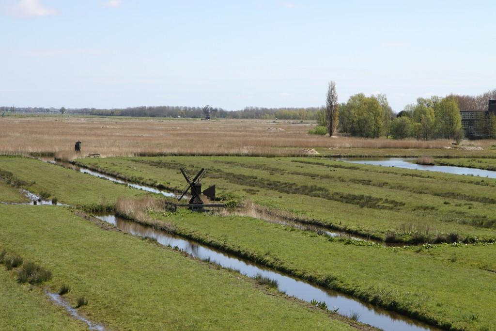 Вот так выглядят все поля в Голландии: все разделены каналами.