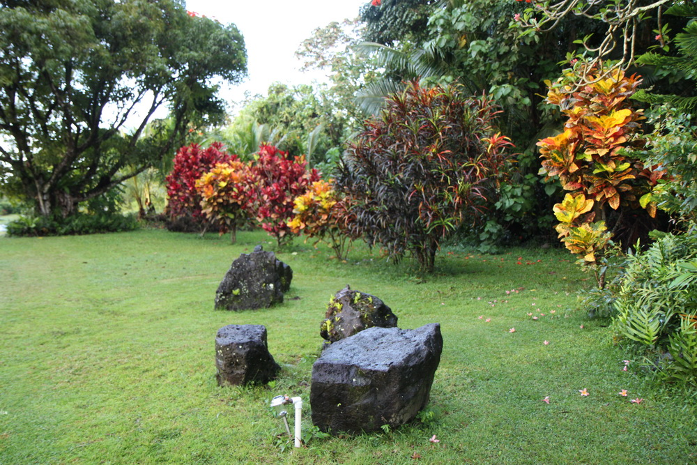 2014_Hawaii_BI_04