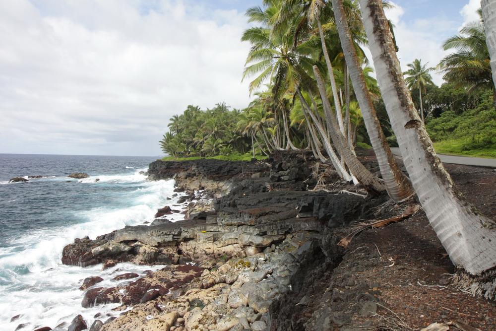 2014_Hawaii_BI2_01
