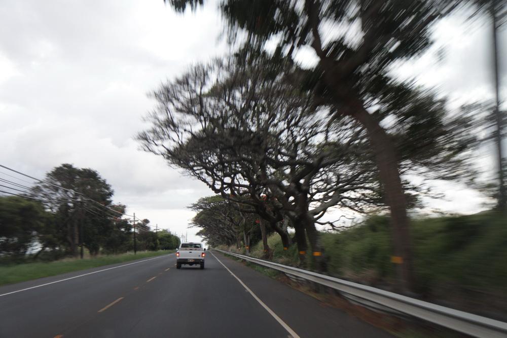 Maiu Hawai