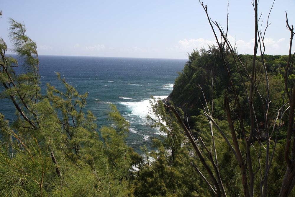 Maiu Hawai Jaws